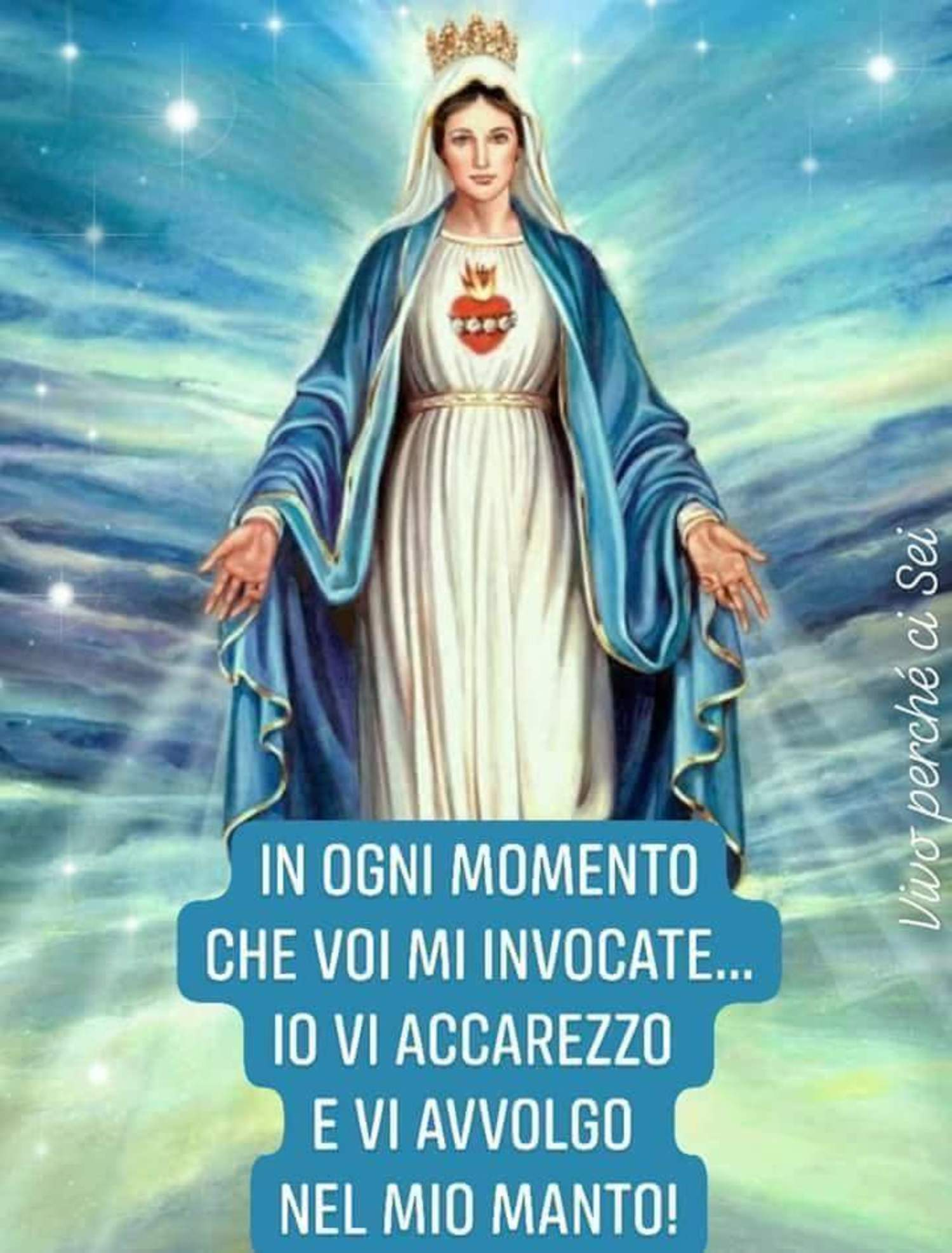 Frasi cristiane con la Vergine Maria 8398