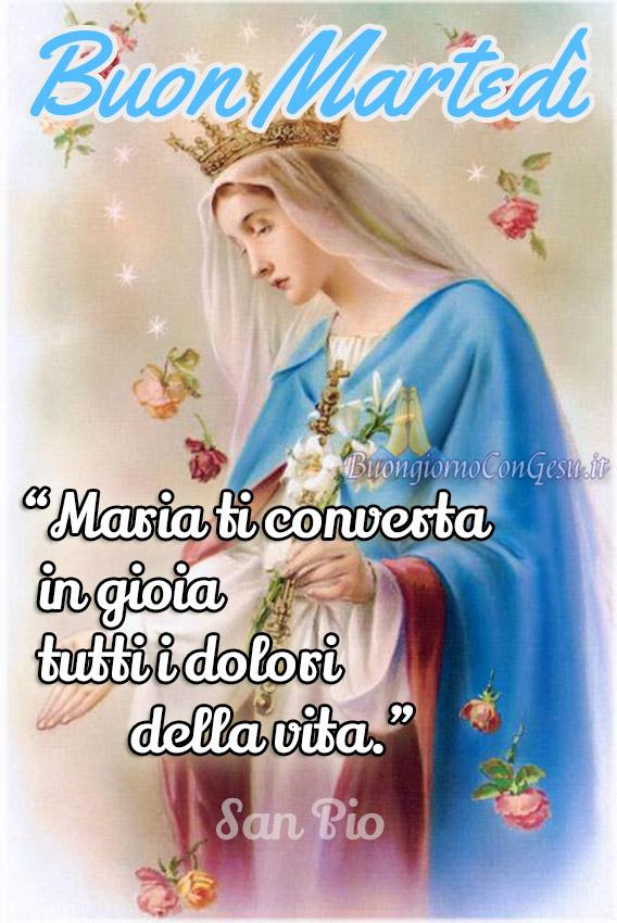 Buon Martedì Con La Madonna Immagini Nuove