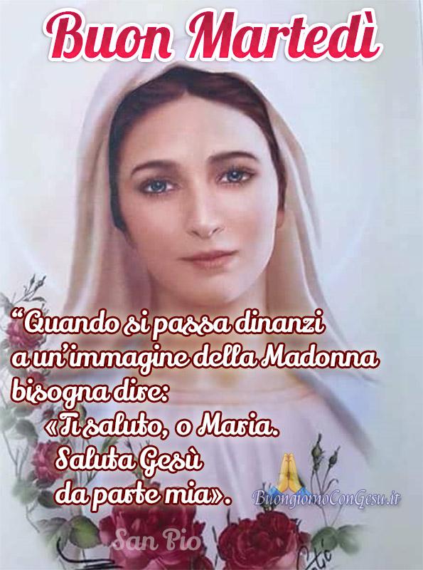 Buongiorno Buon Martedì con la Vergine Maria